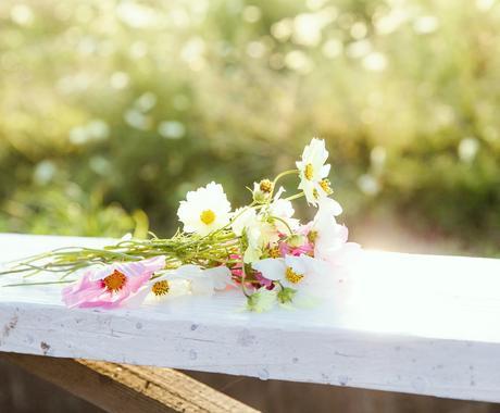 あなたにタロットリーディングで花束を贈ります 頑張り屋さんのあなたへ贈る、タロットの花束。 イメージ1