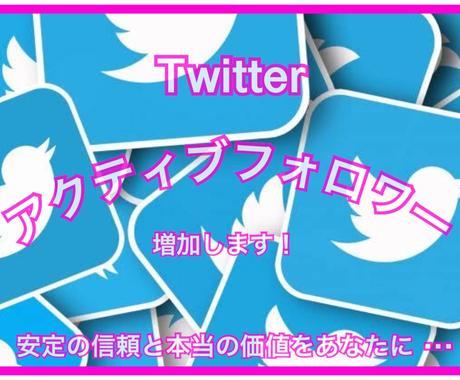 Twitter日本人フォロワーを増やします bot日本人垢や大喜利懸賞垢ではない本物志向のあなたへ! イメージ1