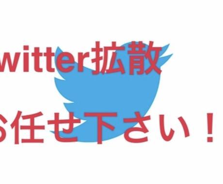 Twitterでインプレッション1万まで拡散します 数回バズり経験あるアクティブ垢2万フォロワーで拡散します!! イメージ1