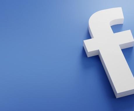 Facebook・インスタでの広告運用代行します 話題のSNS広告はマーケティング専門家にお任せ下さい! イメージ1