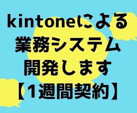 kintoneによる業務システム開発実施します 要件定義、設計から、プログラム開発まで1週間対応致します! イメージ1