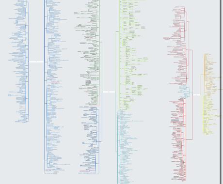 マインドマップを使ったまとめ方、英語教えます 英検1級を取得した医学生が教えます イメージ1
