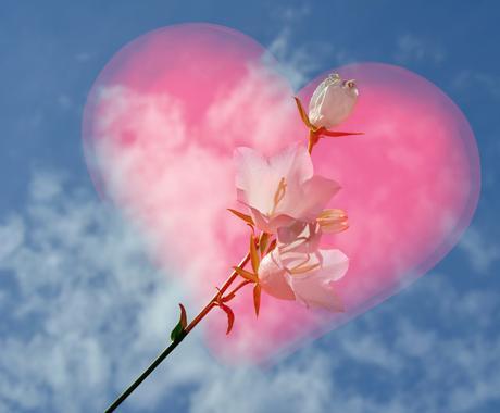 あなたを悩ますものから「根本的な解消法」を教えます 〜悩みのタネから綺麗な花を咲かせるための3ステップ〜 イメージ1