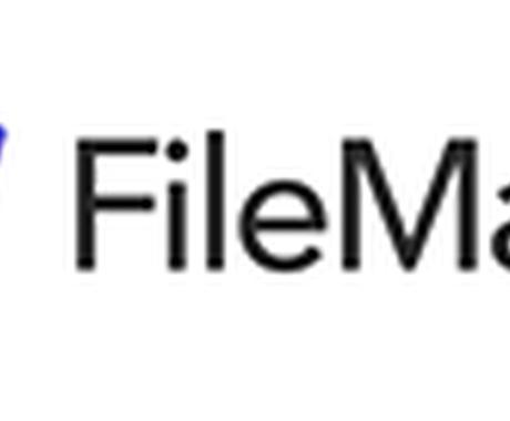 FileMakerのことなら何でも相談に乗ります FileMaker歴20年以上Ver4.1からの開発者 イメージ1