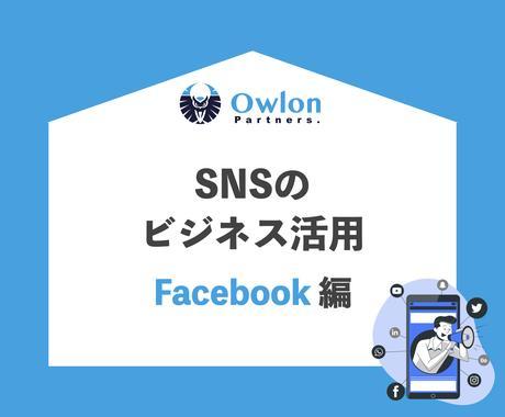 SNSのビジネス活用のノウハウを販売します 【Facebook編】SNSマーケティングを始めませんか イメージ1