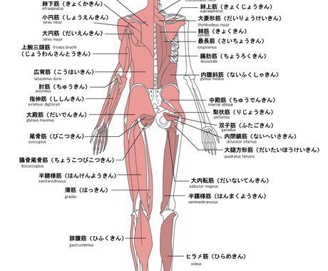 医療英語の翻訳代行賜わります 数多く英語の医療文献を読んできた、現役アメリカ看護師です♪ イメージ1
