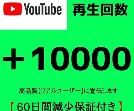 YouTube再生回数+10000まで宣伝します 【再生保持30秒〜】高品質をお届けーーー‼︎ イメージ1