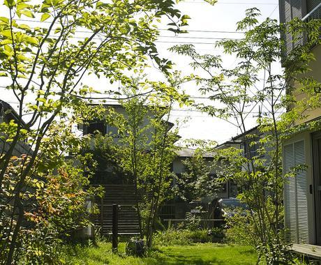庭木の手入れについて、疑問や悩みを解決します 庭園の設計・施工・管理の業務を通じて、適切にアドバイスします イメージ1