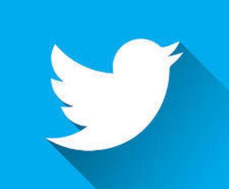 Twitterのプロフィールを添削します 【客観的視点で】フォロワーを伸ばすための強みを引き出します イメージ1