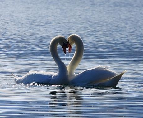 ヒーリングワーク☆ふたりの甦りワーク.:☆をします 愛する人としっかり統合しませんか.。.:*☆ イメージ1