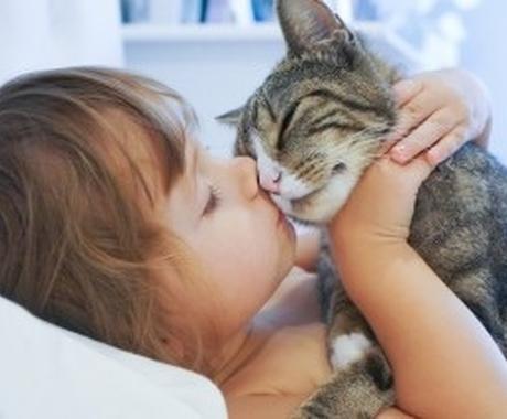 大切なペット様や動物達の気持ちや望みをお伝えします 初回無料ペット様の性格鑑定付き☆お写真のみで鑑定 イメージ1