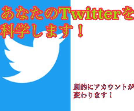 Twitterのノウハウを2週間でコンサルします あなたのアカウントを科学して輝かせませんか? イメージ1