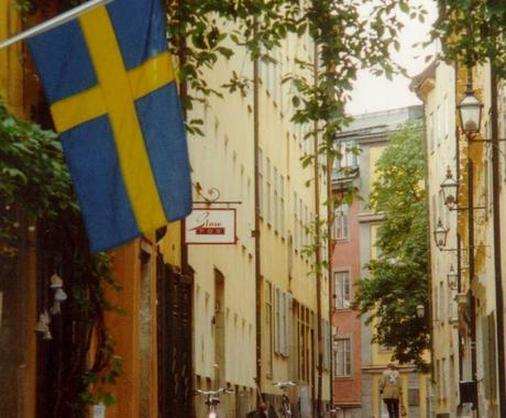 スウェーデン語関連のご相談お受けします 翻訳、語学レッスンをお任せください! イメージ1