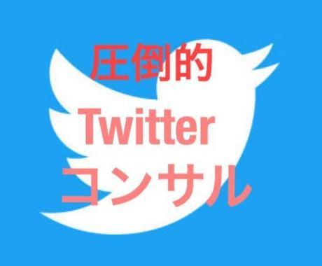 2週間!!徹底的にTwitterコンサルします ツイッターを使いこなしたいあなたにおすすめ!! イメージ1