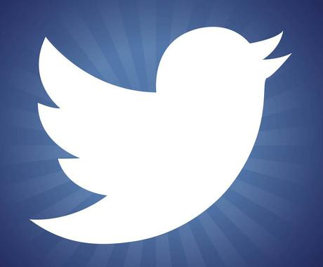 貴方のツイッターアカウントに日本人フォロワーを100人追加します♪ イメージ1