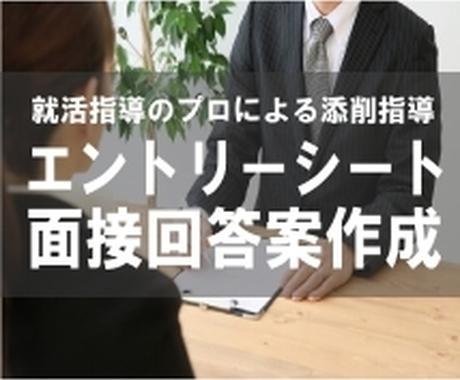 就活・公務員試験のES・面接回答の添削をします 【面接指導のプロが添削】応募先・経歴に応じてカスタマイズ! イメージ1