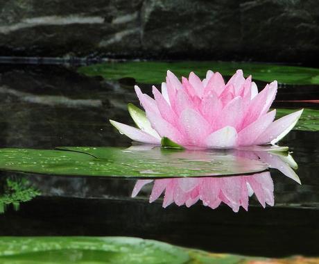 東京都内と埼玉県内のお墓参り代行します 故人への感謝の思い橋渡しします。気になるご料金は1万円~。 イメージ1