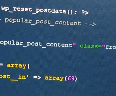 プログラミング言語を学習中の初心者限定〜プログラムの質問お受けします イメージ1