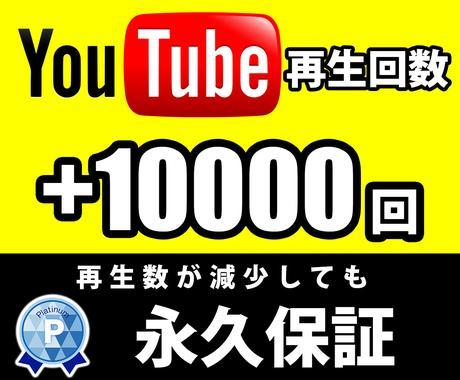 Youtube再生回数10000回増加させます Youtube動画を全世界に拡散します!永久減少保証付き! イメージ1
