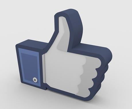 フォロワー6000人のFacebookで拡散します あなたが世の中に広めたい情報をPRします! イメージ1