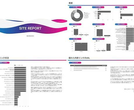 WEBサイトを診断、問題点をレポートでご提供します SEOに必須の内部対策調査を代行、業務を削減! イメージ1