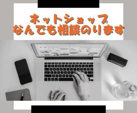 実績◎♪ECサイト・ネットショップの相談にのります 集客や運営、SEO対策などネットショップの簡潔なアドバイス♪ イメージ1