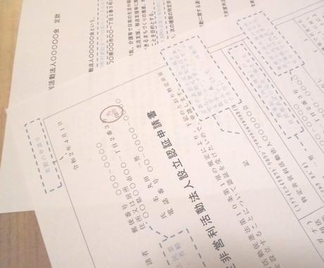 NPO法人設立に必要な書類19種類をお送りします NPO法改正準拠最新版!設立申請~登記~完了届まで完全網羅! イメージ1