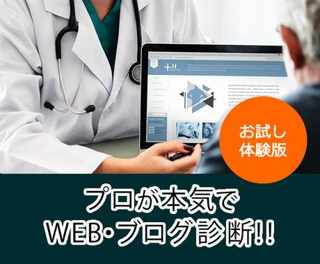 お試し体験版★  プロが本気でサイト診断します WEBコンサルタントがあなたのWEB・ブログ診断を行います。 イメージ1