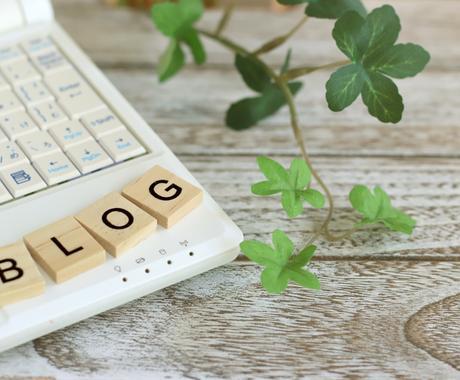 あなたのブログ・WEB記事を添削します 60万PVブロガー&元宣伝広報のコンサルでアクセスUP! イメージ1