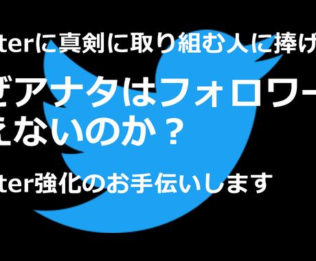 Twitter(ツイッター)強化の徹底指導します 【フォロワーといいねが増えるツイート術】30日間指導 イメージ1