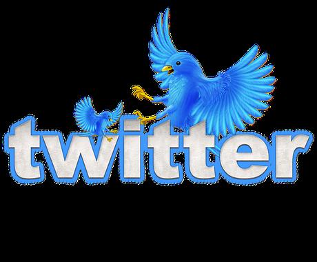 ツイッターで5日間で15回ツイートします 商品サービスを宣伝、拡散、認知したい個人起業家様におすすめ イメージ1