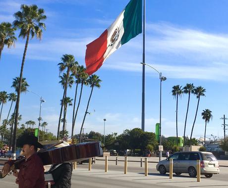 メキシコ•エンセナダから最新の現地情報お伝えします メキシコの情報ならなんでも!現地リサーチも可能です! イメージ1