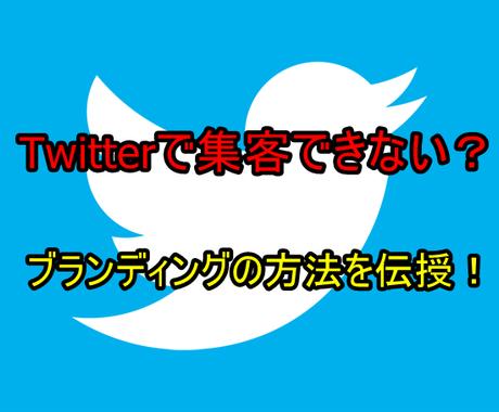 Twitterでのブランディングの仕方を教えます Twitterコンサルタントの私が細かくアドバイスします! イメージ1