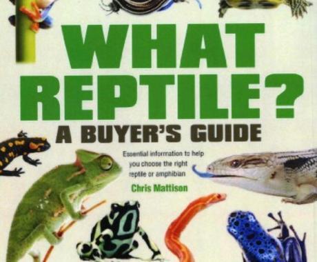 あなたにあったペット爬虫類、教えます 爬虫類を飼育したい!でも、訳あって飼育に踏み出せない皆様! イメージ1