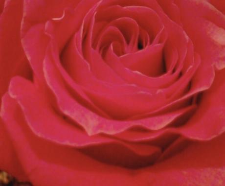 婚期鑑定♡気になるあの人との恋の行方をお伝えします 恋心を成就させ、幸せな結婚がしたい貴方へ♡♡ イメージ1