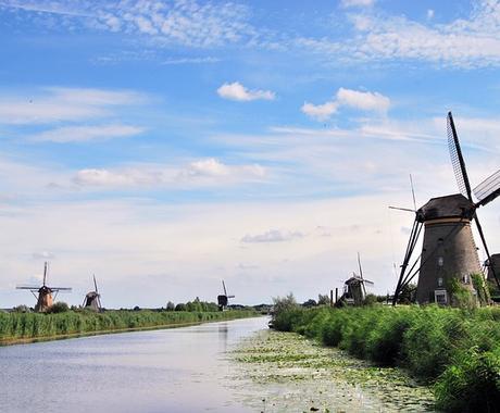 オランダ語 翻訳致します。(在オランダ) イメージ1