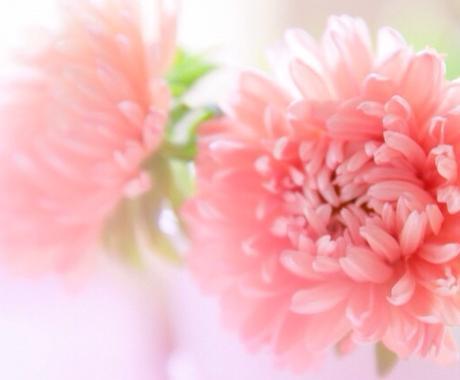 ♡恋愛専用♡  あなたへ今必要なメッセージお伝えします。パートナーや片思いや好きな人がいる方に イメージ1