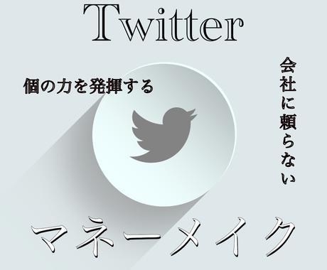 Twitterマネーメイク法をお教えいたします Twitterを使って収益を生み出すステップバイステップ イメージ1