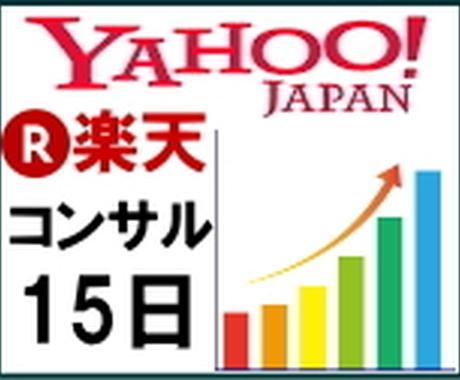 広告なし!で楽天・Yahooの売上を伸ばします ネット通販(モール)で売上が上がらない中小規模店舗様へ イメージ1