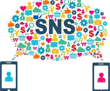SNSでの集客、アカウント運用します SNSでの集客や認知、販売促進 イメージ1