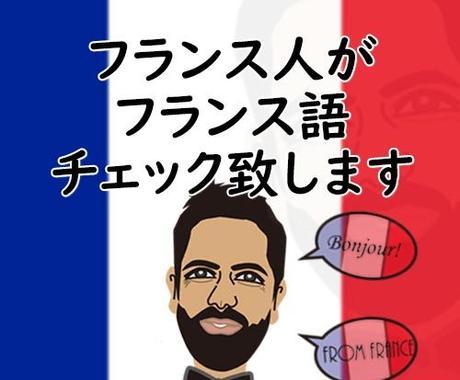 フランス語チェック致します フランス人があなたのフランス語をチェック致します イメージ1
