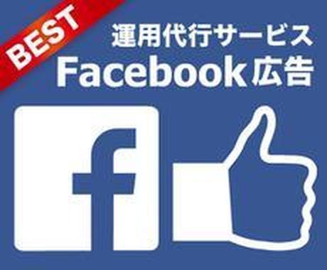 Facebook広告の運用代行をいたします 1億円以上の広告費を使い得た知識で高精度の広告配信 イメージ1