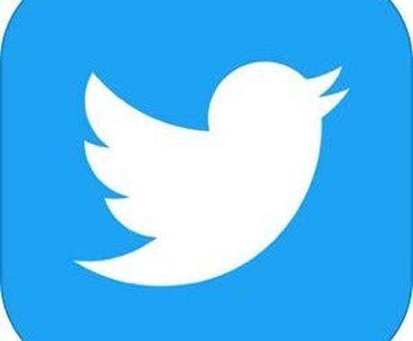 """Twitterの""""その作業""""を楽にします プログラミング知識不要!!現役エンジニアが丁寧に対応します! イメージ1"""