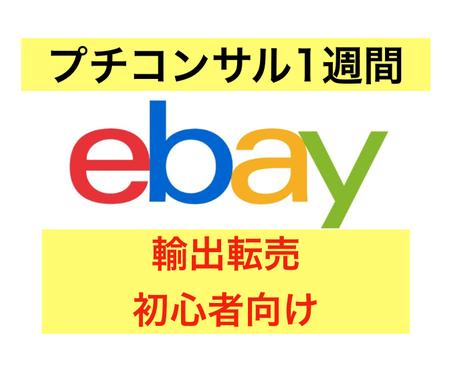 ebay輸出 ミニコンサル経験0でもサポートします ebay初心者向け!登録,リサーチ,出品,顧客対応相談可能! イメージ1