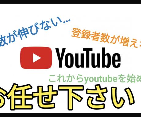 youtuberのお困り事、悩み、コンサル致します 再生数が伸びない。登録者が増えない。youtube始めたい! イメージ1