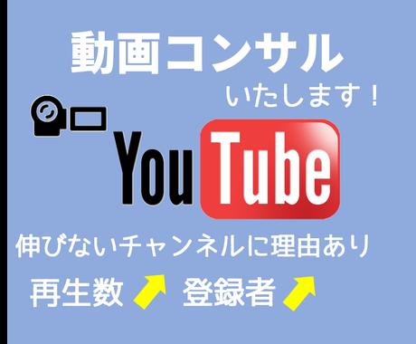 YouTube動画のコンサルティングいたします 再生数が上がらないチャンネル登録者が伸びないとお悩みの方に イメージ1