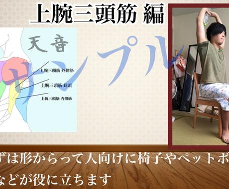 初心者:自宅でトレーニング.メニュー作成します 各種目説明.写真や動画で徹底解説 イメージ1