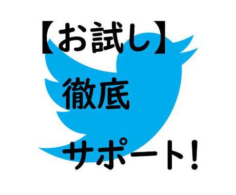 お試し1週間Twitteアカウントのコンサルします フォロワー5万人のインフルエンサーが丁寧にサポート イメージ1