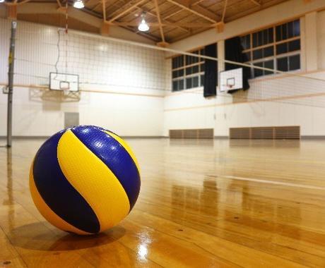 現役大学プレイヤーがバレーボールの基礎教えます 老若男女誰でもわかるバレーボールの基礎 イメージ1