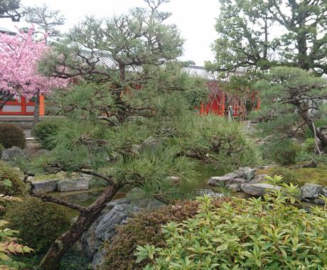 現役バスガイドが京都観光のお手伝いをします 1日の行程考えます!歴史や豆知識もお任せ下さい♪ イメージ1